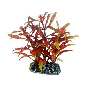 Plast växt-Nesaea 7 cm