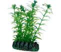 Plast växt- Lagarosiphon 7cm