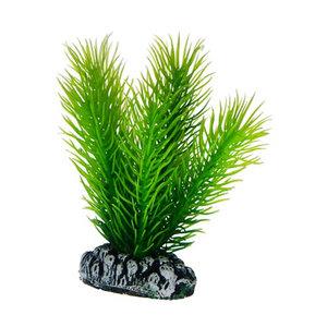 Plast växt- Mayaca 7cm