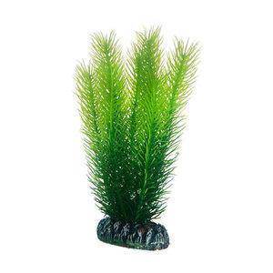 Plast växt- Mayaca 16cm