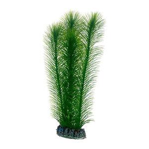 Plast växt- Mayaca 25cm