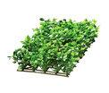 Plant Mat 4 25x12,5cm Slut