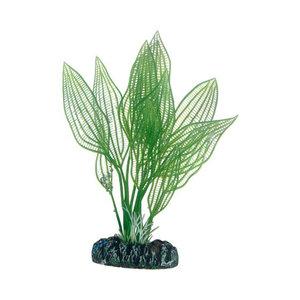 Plast växt- Aponogeton 16cm